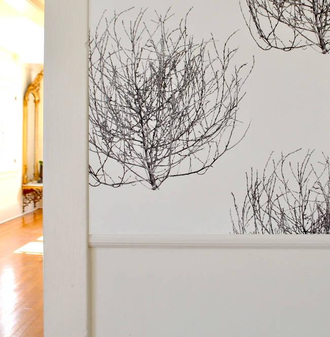 Tumbleweed, Greyscale - Genevieve White Carter