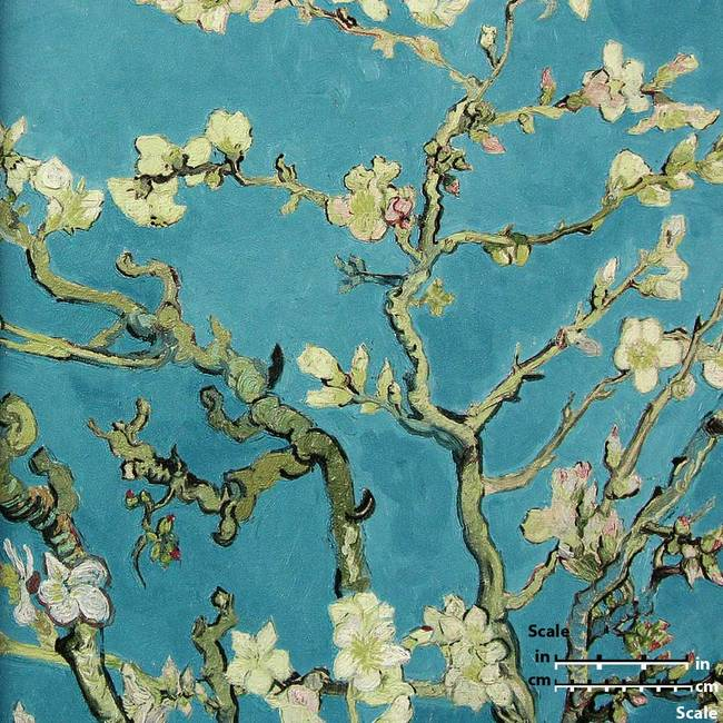 Almond Blossom Turquoise