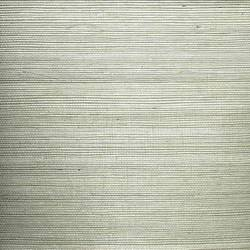 Silver Sisal - WND226