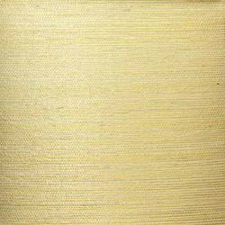 Ivory Sisal on Gold - WND227
