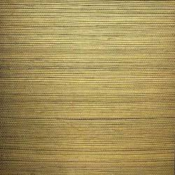 Multicolor Gold Sisal - WND229