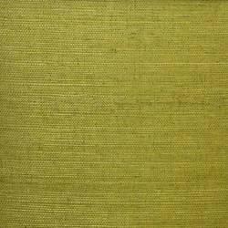 Moss Green Sisal - WND238