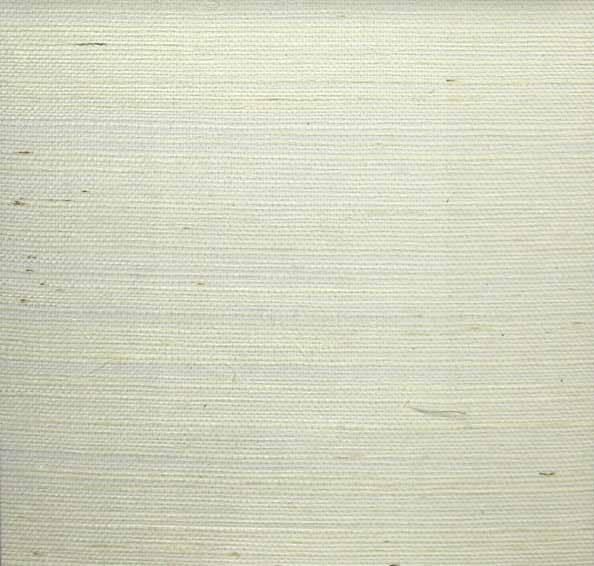 Bright White Sisal - WND239