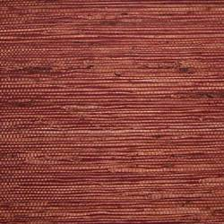 Maroon Fine Arrowroot - WND242