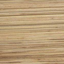 Beige on Tan Grasscloth - WND254