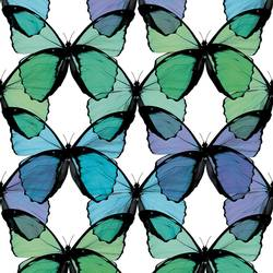 Layered Butterfly - Seafoam