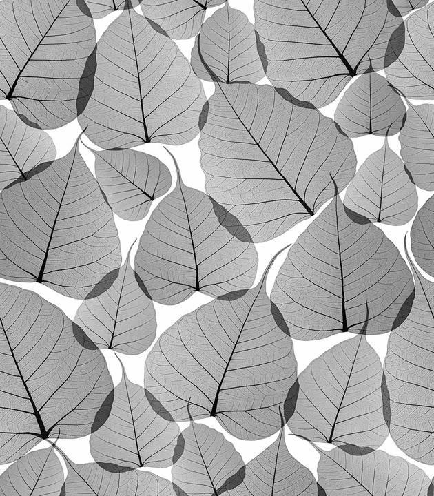 Dry Leaf - Gray