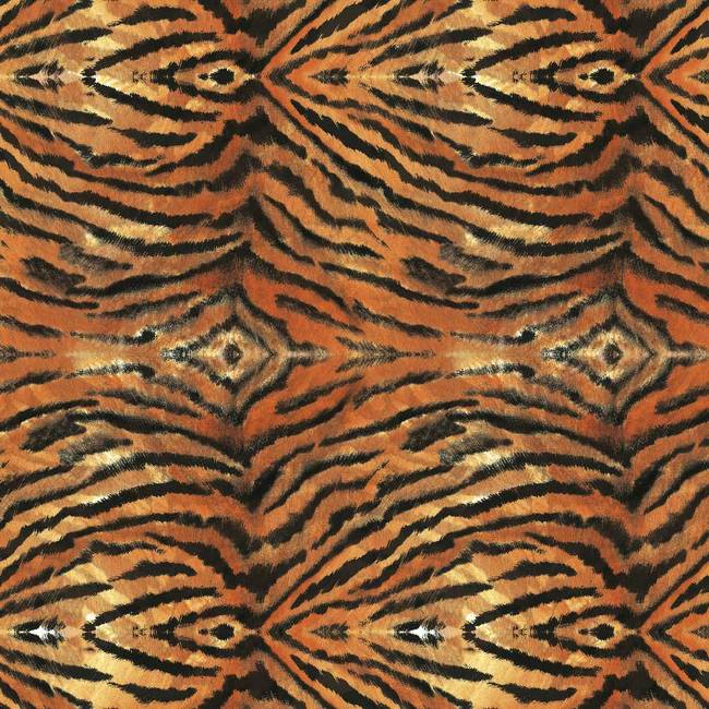 Tiger, Malayan