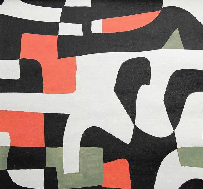 Shape Shifter - High Contrast - Artist Canvas