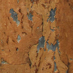 Cork Wallcovering -SN123