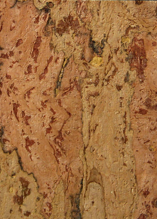 Cork Wallcovering -SN253