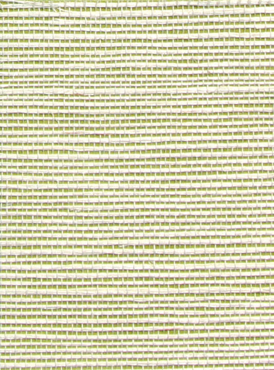 Sisal Wallcovering -SN278