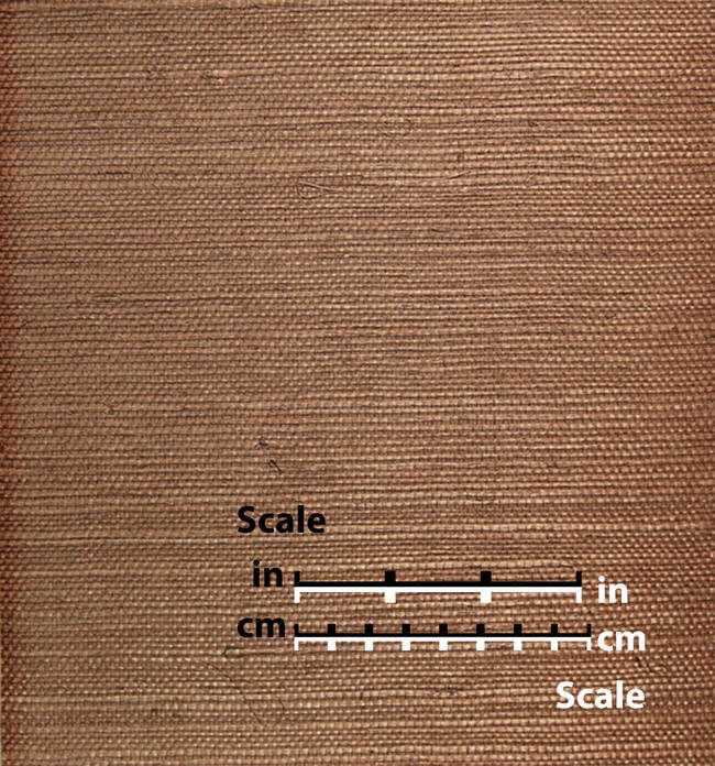 Brown Grasscloth - NL406