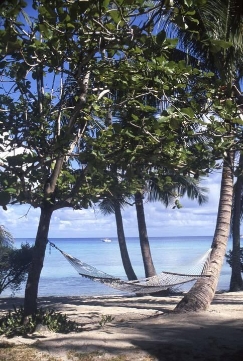 Islands And Sands 60 Underwater - Beverly Factor