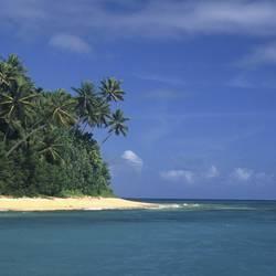 Islands And Sands 65 Underwater - Beverly Factor