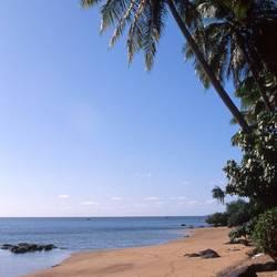 Islands And Sands 79 Underwater - Beverly Factor