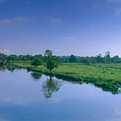 River flowing through landscape, Ouse River, Ely, Cambridgeshire, England