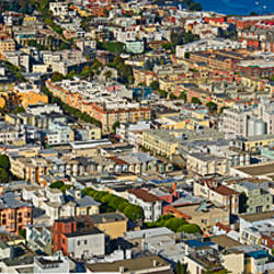 Aerial view of buildings in a city, Columbus Avenue and Fisherman's Wharf, San Francisco, California, USA