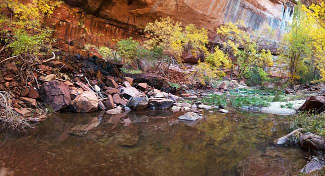 Reflecting pond in Zion National Park, Springdale, Utah, USA