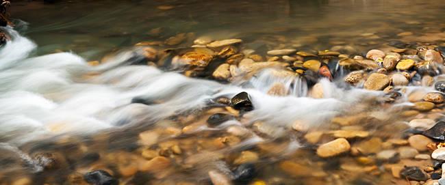 Virgin River flowing at a national park, Zion National Park, Springdale, Utah, USA