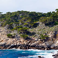 Coastline, Point Lobos State Reserve, Carmel, Monterey County, California, USA
