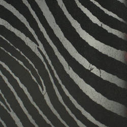 Plush Flocked Wallpaper Zebra Stripes Ebony/Black Velvet