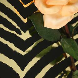 Zebra Stripe Gold Mylar/Black Flock