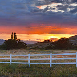 Fence in a field, Ashland, Jackson County, Oregon, USA