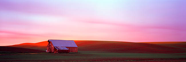 Barn in a field at sunset, Palouse, Whitman County, Washington State, USA