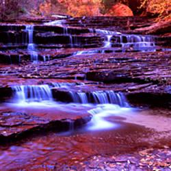 Stream flowing through rocks, North Creek, Zion National Park, Utah, USA