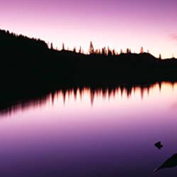 Reflection of trees in a lake, Mt Rainier, Mt Rainier National Park, Pierce County, Washington State, USA