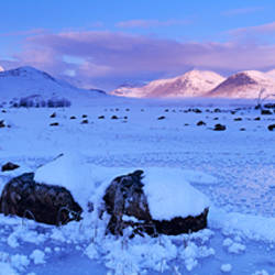 Rock formations on a snow covered landscape, Rannoch Moor, Highlands, Scotland