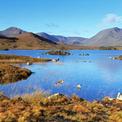 Islands in a lake, Black Mount, Rannoch Moor, Highlands, Scotland