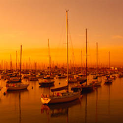 Boats moored at a harbor at dusk, Chicago River, Chicago, Cook County, Illinois, USA