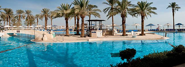 Palm trees at the poolside, Crowne Plaza Hotels Dead Sea, State Road 90, Israel