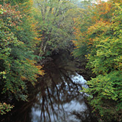 View of Dart River and trees turning orange from Holne Bridge, Dartmoor, Devon, England