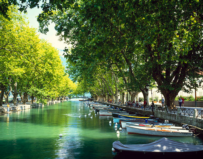Boats docked in a canal