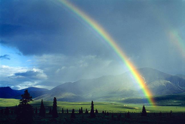 Rainbow over a landscape, Denali National Park, Alaska, USA