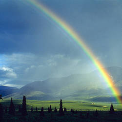 Rainbow over a landscape, Denali National Park, Alaska, USA