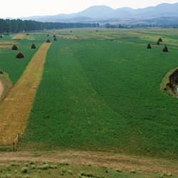 High angle view of agricultural fields, Transylvania, Romania