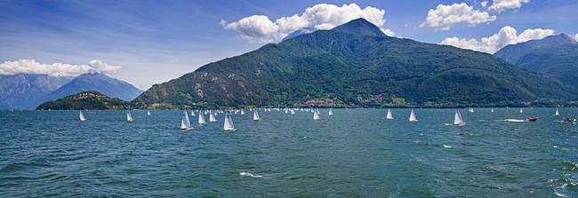 Sailboats in the lake, Lake Como, Como, Lombardy, Italy
