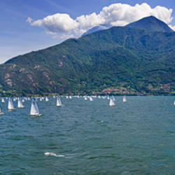 Sailboats in the lake, Lake Como, Como, Lombardy, Italy