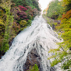 Waterfall in a forest, Yutaki Falls, Oku-Nikko, Tochigi Prefecture, Kanto Region, Japan