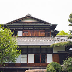 Trees in front of a house, Machiya, Tokyo Prefecture, Japan