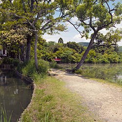 Reflection of trees in a pond, Daitoku-JI, Kyoto City, Kyoto Prefecture, Japan