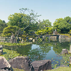 Reflection of trees in a pond, Ninomaru Garden, Nijo Castle, Kyoto Prefecture, Japan