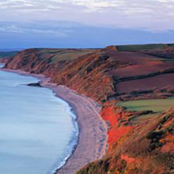 High angle view of a coastline, Babbacombe, Torquay, North Devon, Devon, England