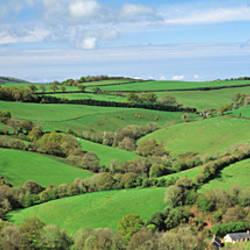 Rolling hills, Bickleigh, Tiverton, Devon, England