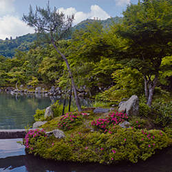 Pond in a temple, Sogen Pond, Tenryu-ji Temple, Arashiyama District, Kyoto Prefecture, Kinki Region, Honshu, Japan