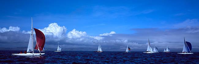 Boats in regatta, Baie De Douarnenez, Finistere, Brittany, France